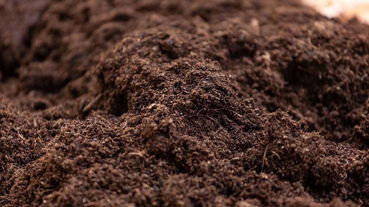 tanah kompos untuk tanaman